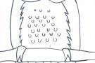 Owl by Ciara (6th)