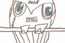 Owl by Jamie (5th)