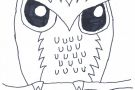 Owl by Jessica (5th)