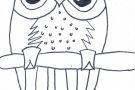 Owl by Megan (6th)