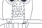 Owl by Oisín B (5th)