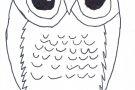 Owl by Seán S (5th)