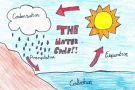 The Water Cycle by Anon