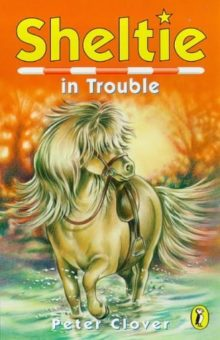 Sheltie In Trouble By Peter Clover In Sheltered